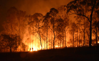 Open House – Implementation of Phase 1 of Landscape Fire Management